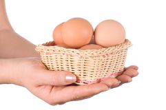 Basket with eggs in the hand Stock Photos
