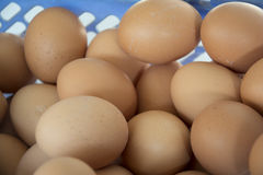 The basket of eggs. Inside the blue basket, the egg is very creative Royalty Free Stock Image