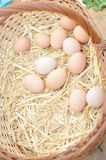 Basket with eggs on market Royalty Free Stock Image