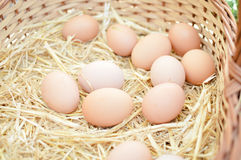 Basket with eggs on market Royalty Free Stock Photo