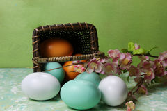 A basket of Eggs Stock Image