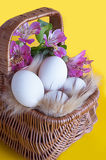 Basket with eggs and spring flowers Royalty Free Stock Photography