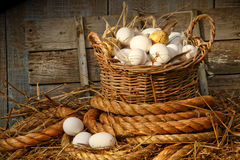 Basket of eggs on straw. In the chicken coop stock images