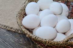 Eggs in a basket Royalty Free Stock Photos
