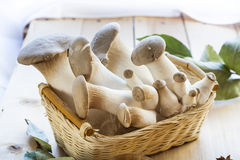 Basket with eryngii mushrooms and ingredients for cooking on the wooden table of the kitchen background. Basket with eryngii mushroom and ingredients for cooking Stock Photos