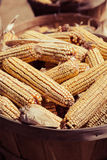 Basket of Feed Corn Stock Image