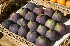 Basket of figs Royalty Free Stock Photo
