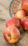 A basket filled with Apples Royalty Free Stock Images