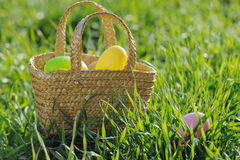 Basket filled with Easter eggs in green grass Royalty Free Stock Photo