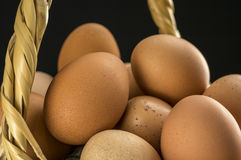 Basket filled with eggs Stock Photo