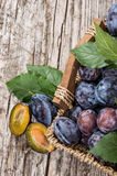 Basket filled with fresh Plums Royalty Free Stock Photo