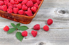 Basket Filled with Fresh Ripe Raspberries on Aged Wood Stock Image