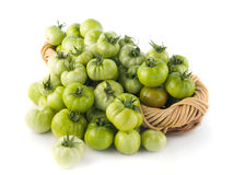 Basket filled with green tomatoes Royalty Free Stock Images