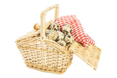 Quail eggs basket Stock Photos