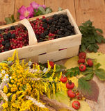 A basket filled with ripe berries and a bouquet of filed flowers on a wooden surface decorated with hips and autumn leaves Royalty Free Stock Photography