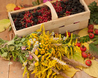A basket filled with ripe berries and a bouquet of filed flowers on a wooden surface decorated with hips and autumn leaves Royalty Free Stock Photos