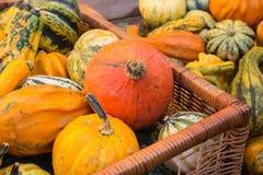 Basket Filled With Various Pumpkins Stock Image