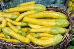 Basket filler with natural yellow squash Royalty Free Stock Images