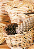 Basket with fir cones Stock Images