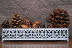Basket with fir cones, cones enupar and acorn Royalty Free Stock Photography