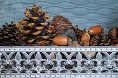 Basket with fir cones, cones enupar and acorn Stock Photography