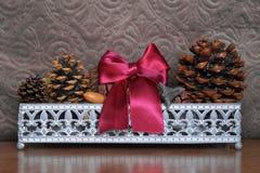 Basket with fir cones, cones enupar and acorn Stock Image
