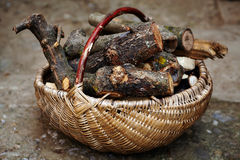 Basket with firewood Royalty Free Stock Images