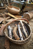 Basket with firewood in the countryside Stock Images