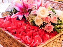 A basket of flower royalty free stock image