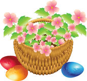 Basket with flowers Stock Photos