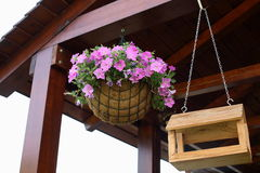 Basket with flowers. The basket with flowers hangs in cafe Stock Photo