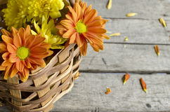 Basket flowers Royalty Free Stock Photos
