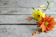 Basket flowers Royalty Free Stock Photography