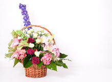 Basket of flowers Stock Image