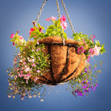 Basket with flowers. Decorative basket with flowers with the blue sky background Royalty Free Stock Photos
