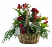 Basket of Flowers. Isolated on a white background Stock Photos