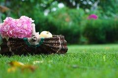 Basket  flowers apple Royalty Free Stock Photo