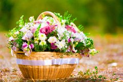 Basket with flowers Stock Photography