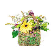 Basket with flowers Royalty Free Stock Images