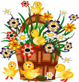 Basket with flowers and ducklings Stock Images