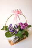 Basket of flowers - gift Royalty Free Stock Images