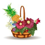 Basket of flowers isolated on white Stock Images