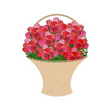 Basket of flowers on a white background. Large basket of red ros Royalty Free Stock Photos