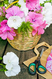 Basket of flowers on a wooden background. Lavatera Royalty Free Stock Images