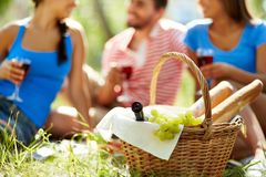 Basket with food Royalty Free Stock Photos