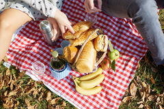 Basket with food, bread and wine on picnic Stock Photography