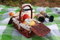 Basket with food on plaid picnic in spring park Stock Image