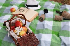 Basket with food on plaid picnic in spring park Stock Photos