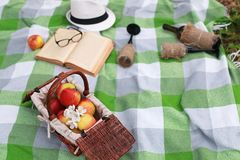 Basket with food on plaid picnic in spring park Royalty Free Stock Photography