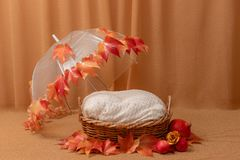 Free Basket For Baby Decorated With Autumn Leaves Royalty Free Stock Photo - 165735235